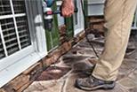 termites solution